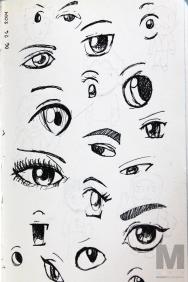 Eye Study, 2014